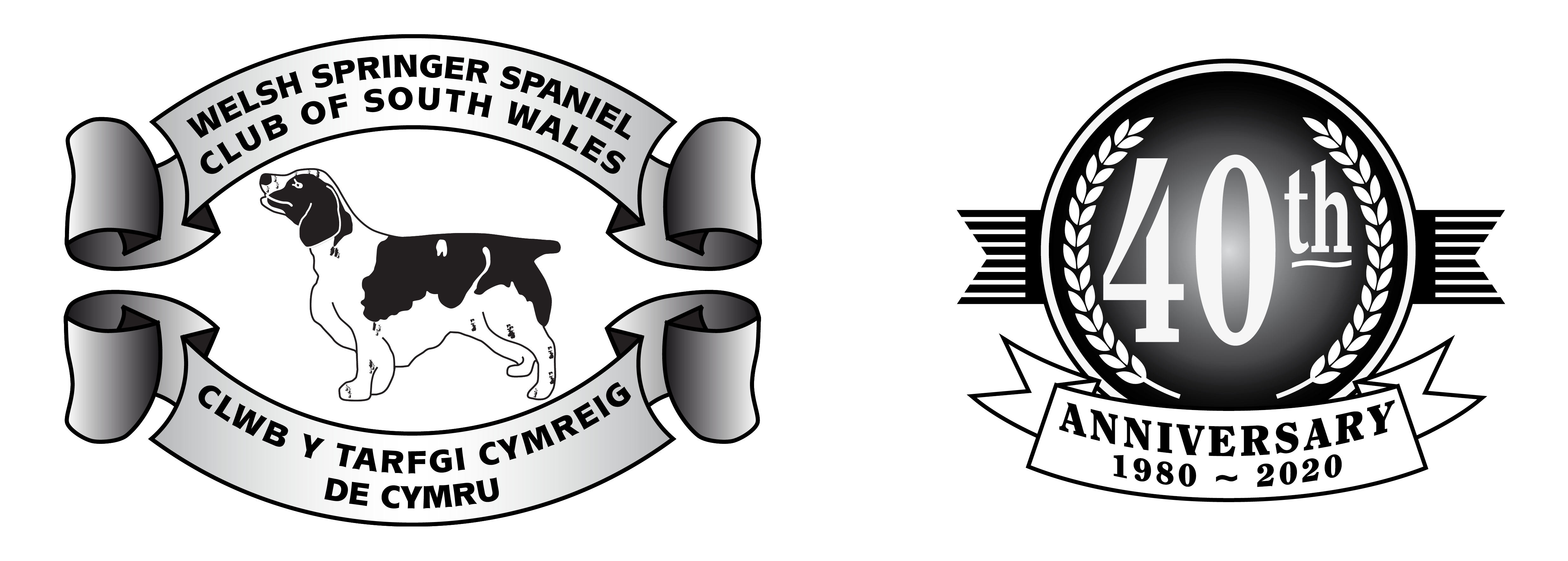 wsscsw logo plus 40th b